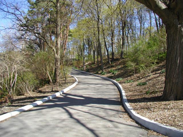 Construction of Walking path